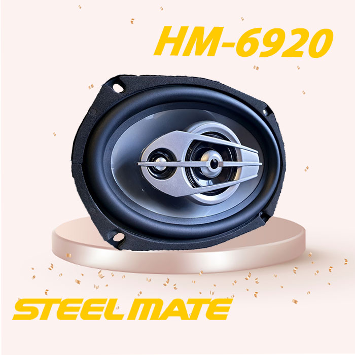 HM-6920